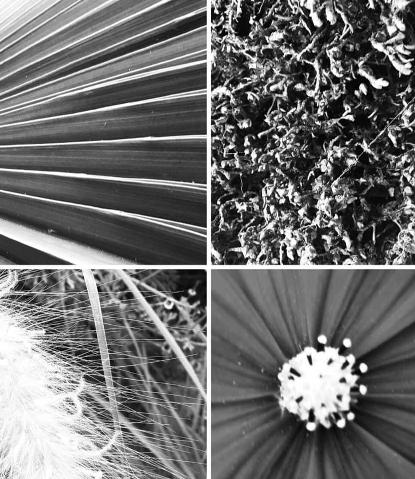 Digital Photography 16.jpg