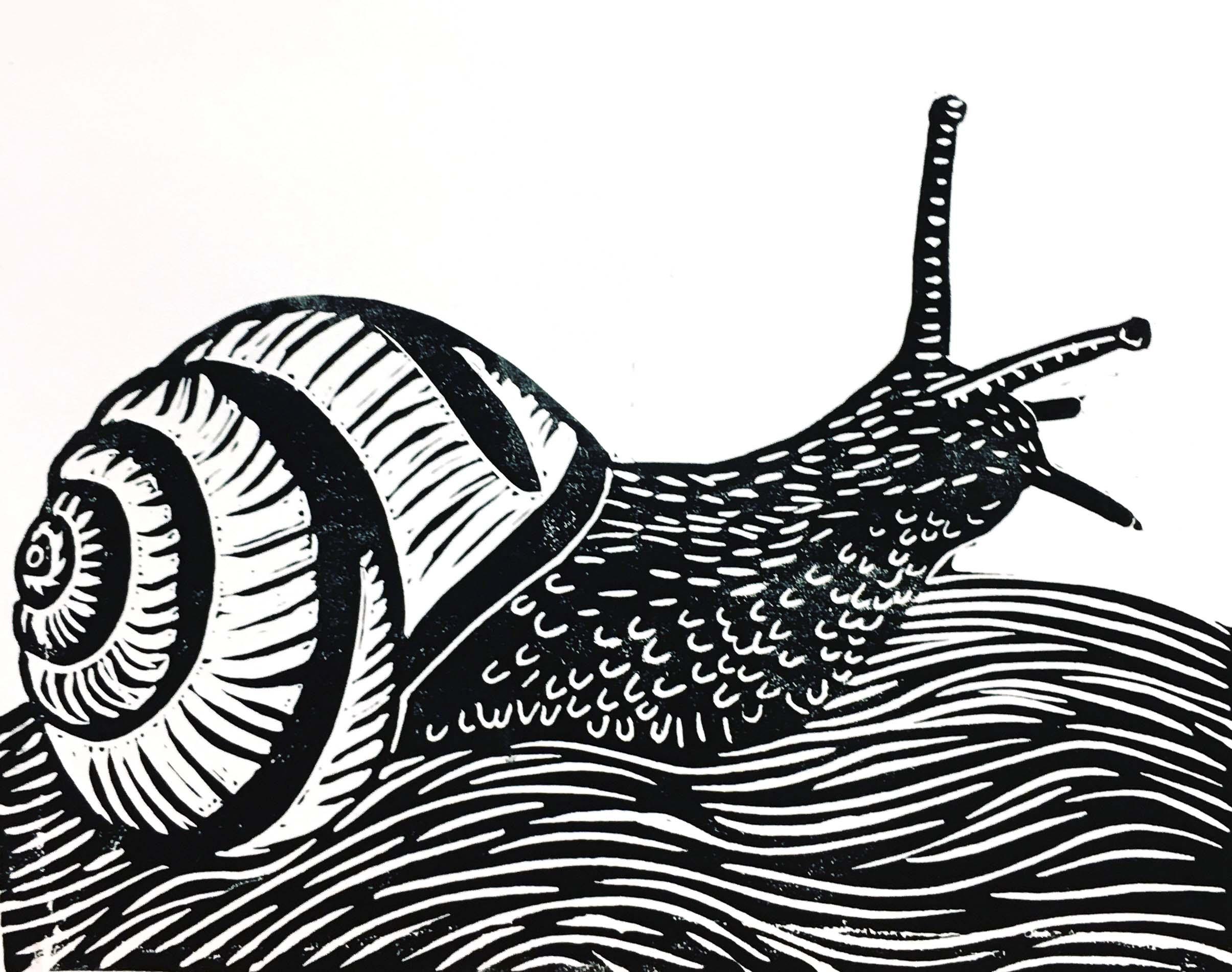 Printmaking Snail.png