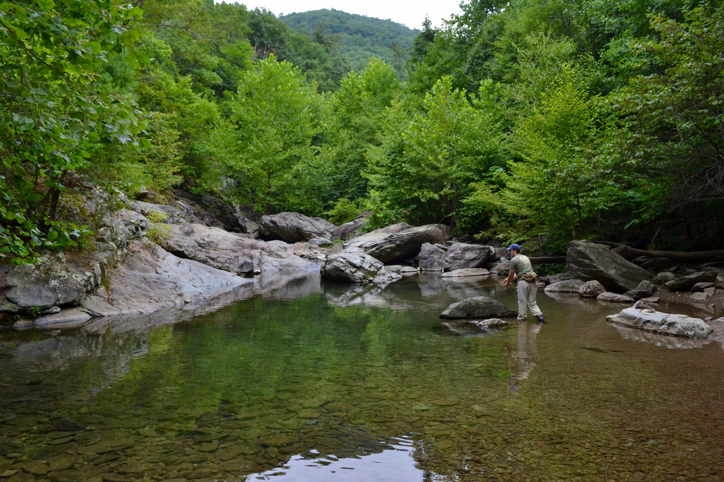 A wide pool on a well-known Virginian small stream. Typically it draws a lot of swimmers, but this day there was only my wife, I, and some spooked brook trout.