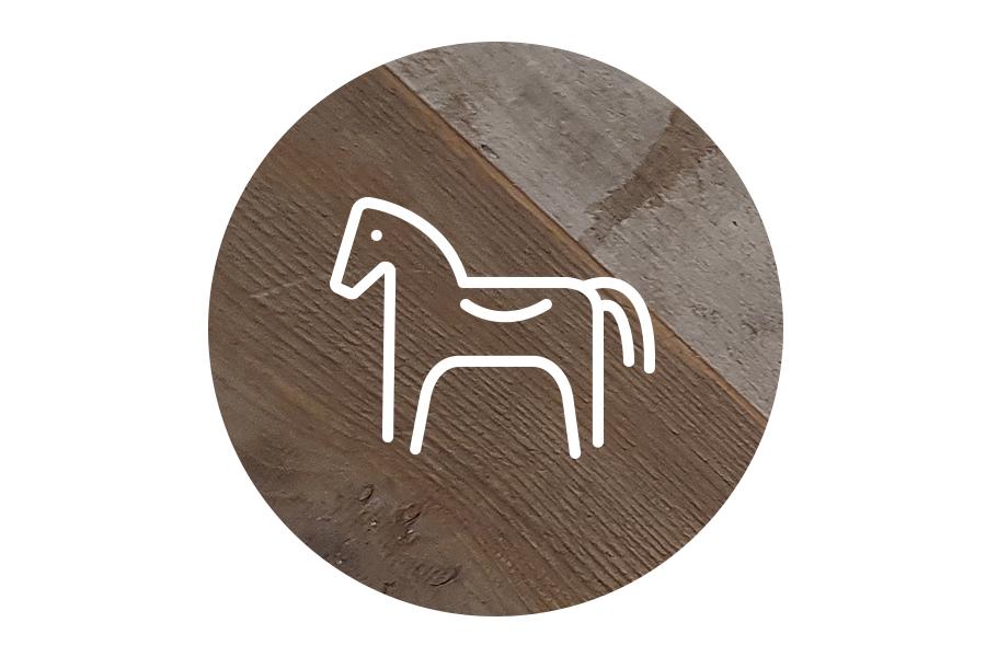 HSOTC_icon-horse.jpg