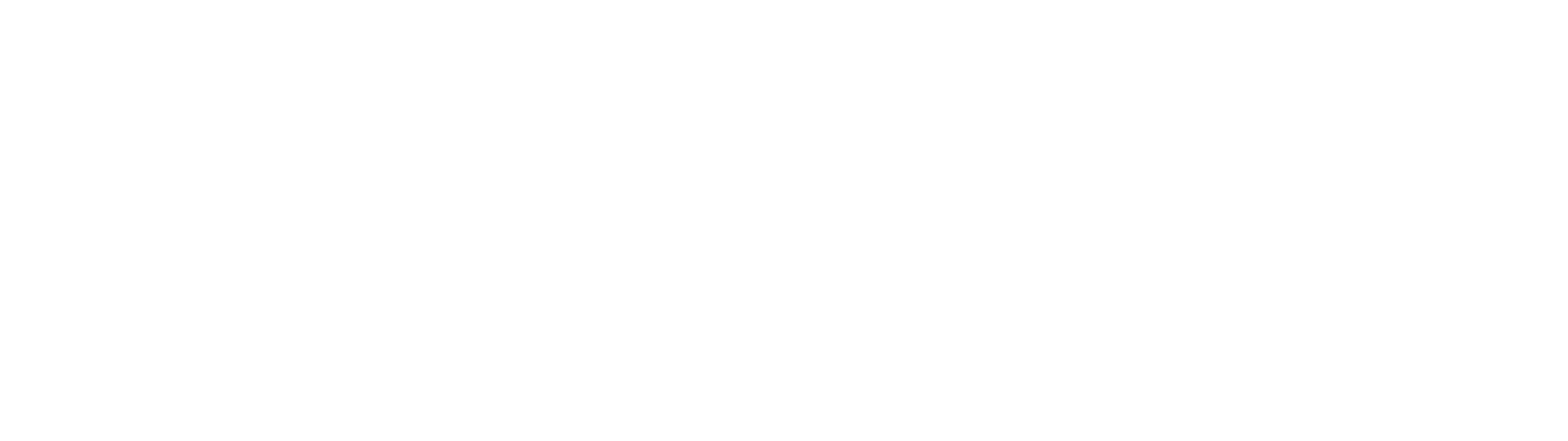 Copy of CameraBits_LogoWhite.png