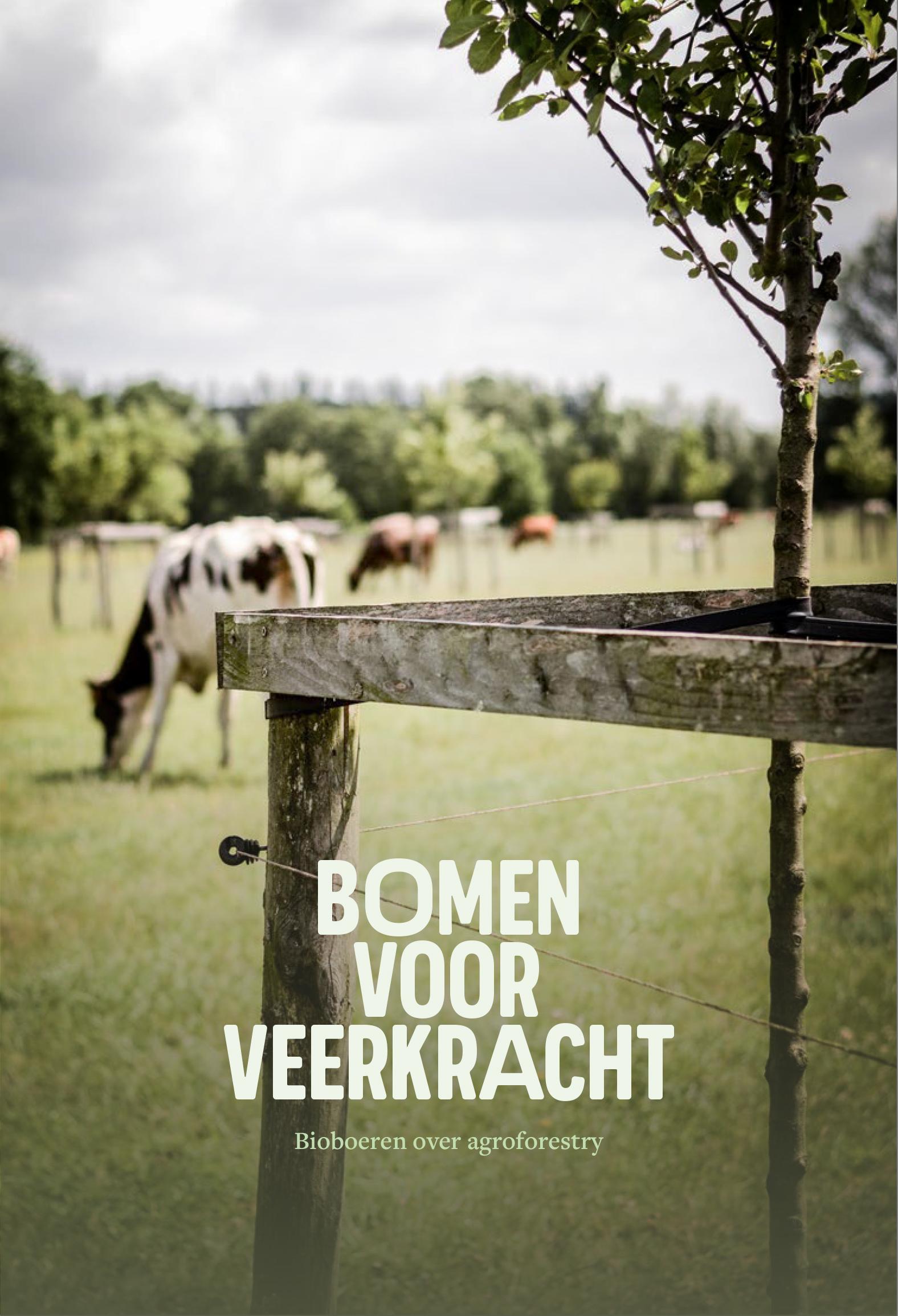Bomen-voor-veerkracht-Bioboeren-over-Agroforestry_Brochure_Web-1.jpg
