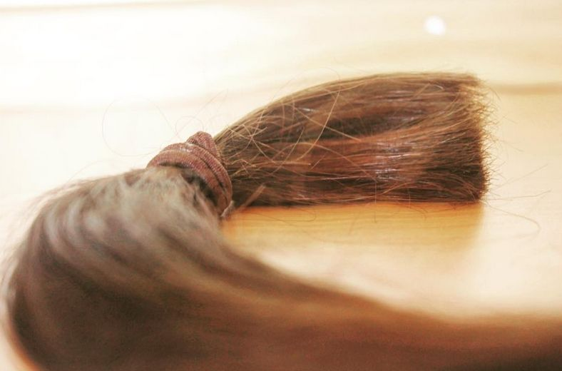 CANSA-ponytail-donation.jpg