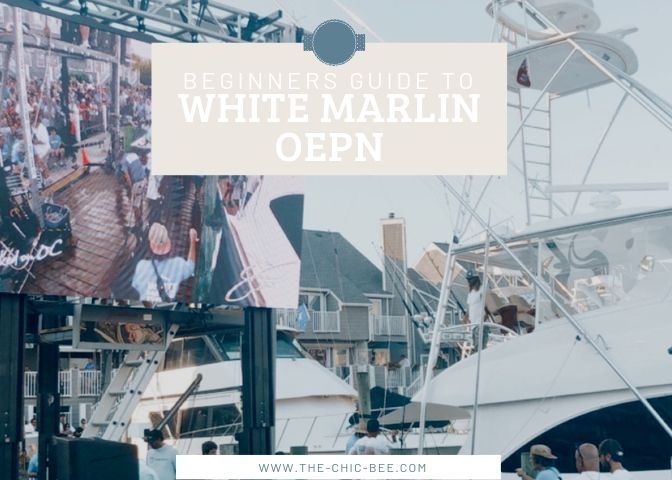 Beginners guide to white marlin open