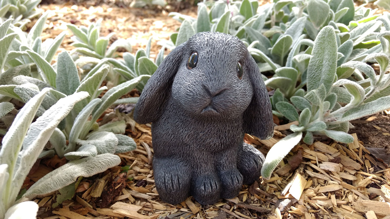 choice-bunny-cabbage-patch11 (1500x844).jpg