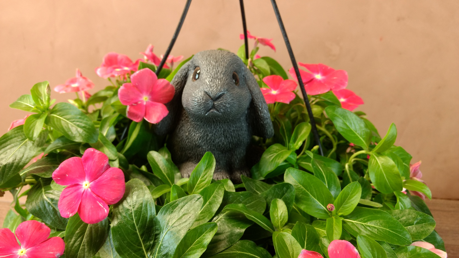 choice-bunny-hanging-planter4 (1500x844).jpg