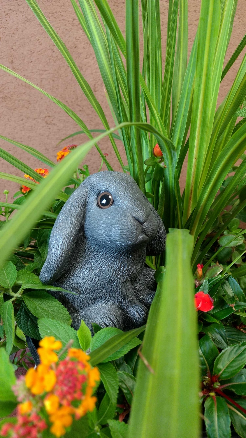 choice-bunny-planter-pot-13 (844x1500).jpg