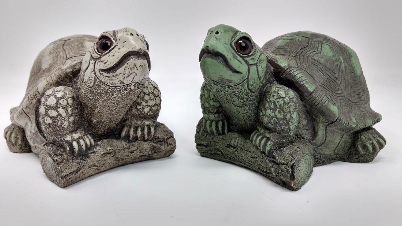 turtle-color-options-15.jpg