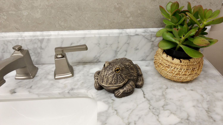 choice-frog-indoor-sink10.jpg