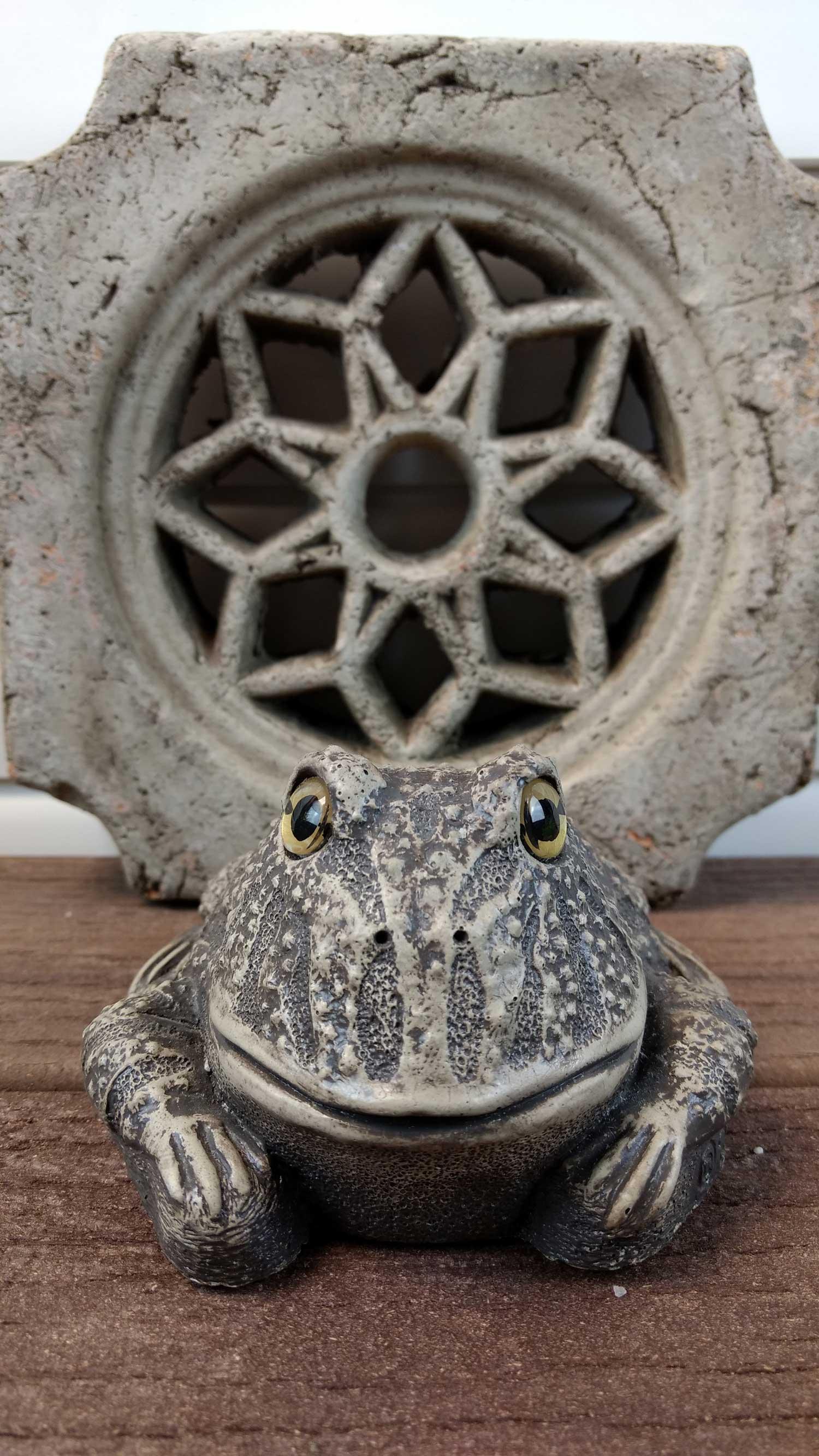 choice-frog-zen-deck-8.jpg