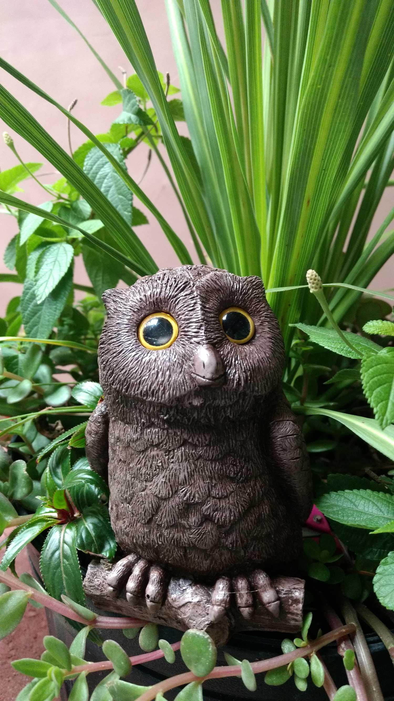 owl-planter-5.jpg