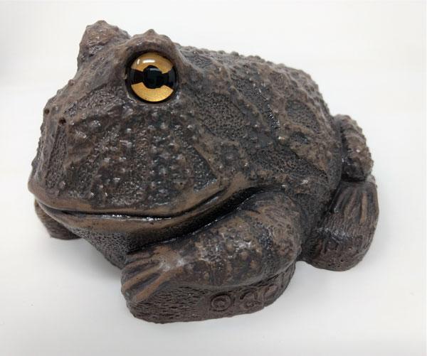 bronze-frog-side.jpg