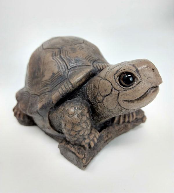 bronze-turtle-front.jpg