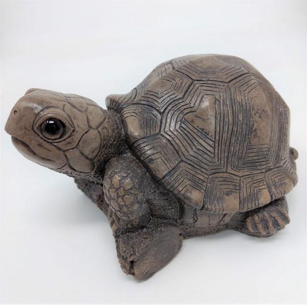 bronze-turtle-other-side.jpg