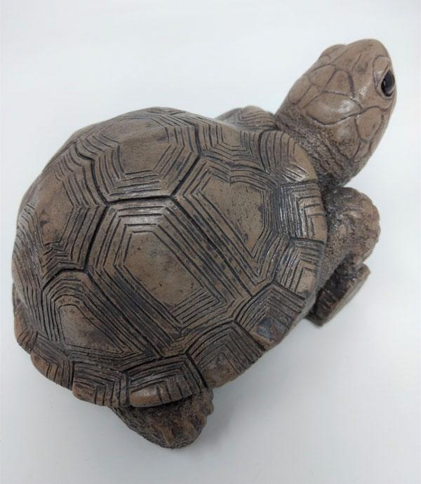 bronze-turtle-top.jpg