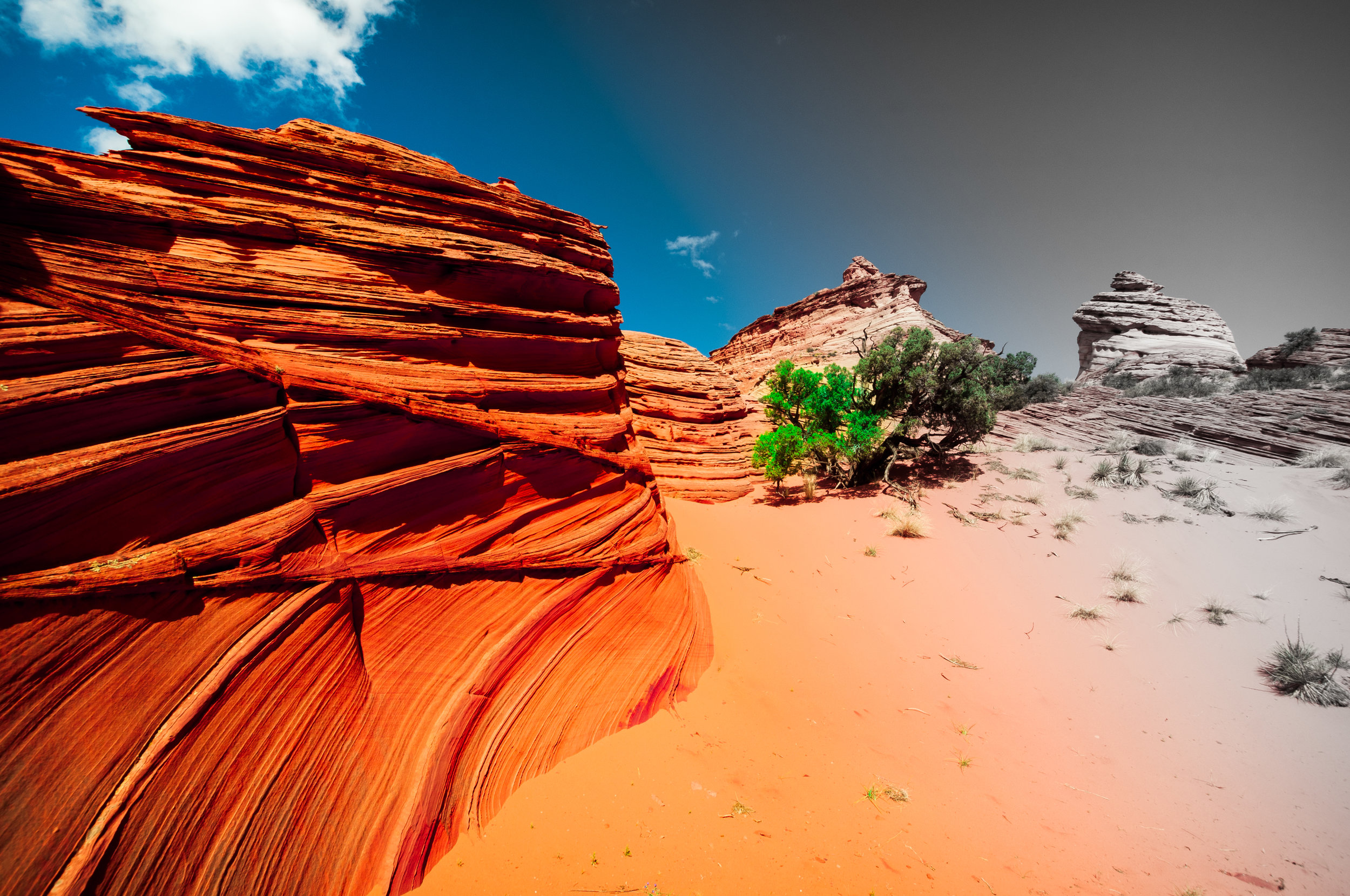 140918. Coyote_Buttes_South (23).jpg