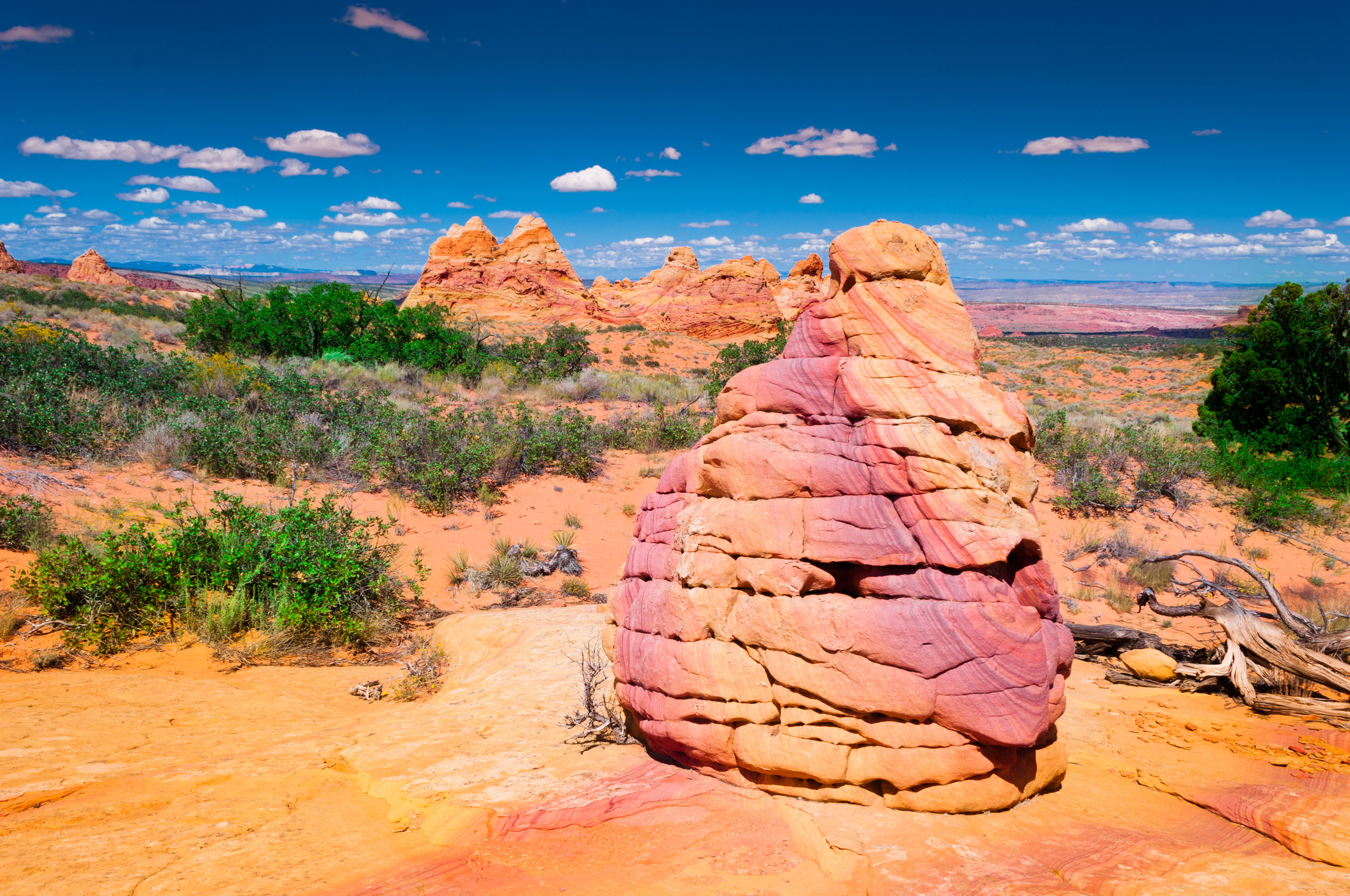 140918. Coyote_Buttes_South (85).jpg
