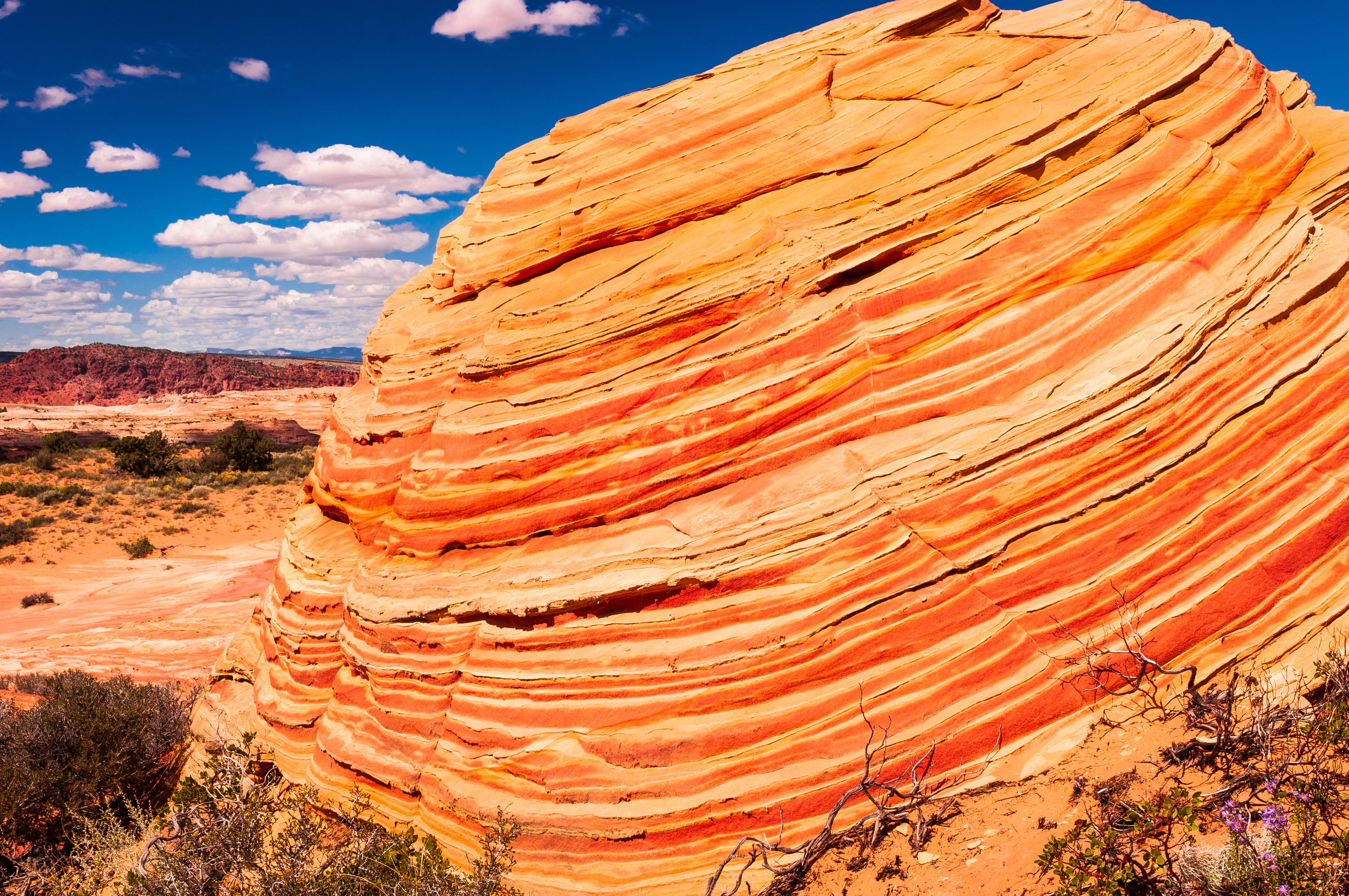 140918. Coyote_Buttes_South (99).jpg
