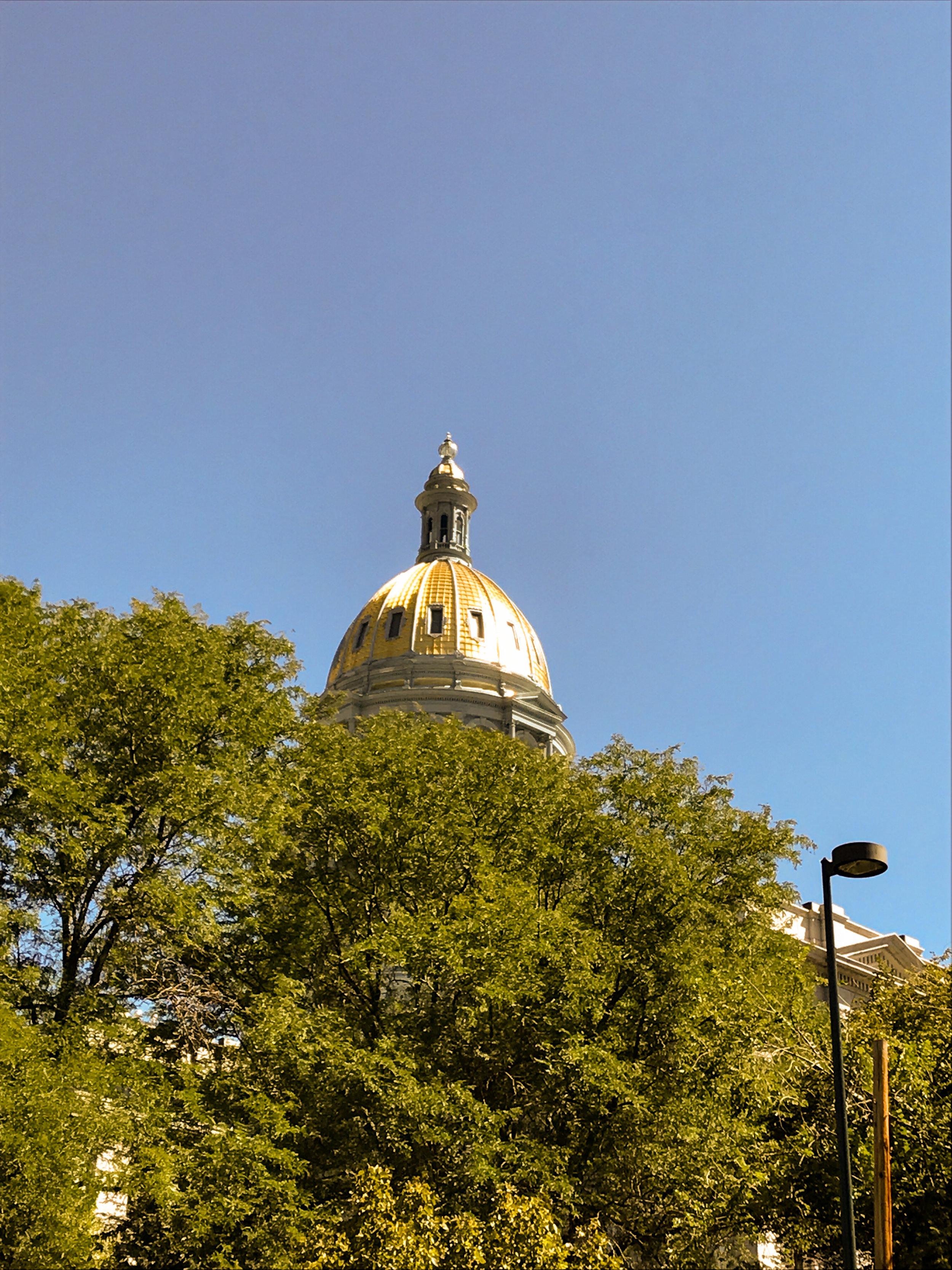 170825. Denver (11).jpg