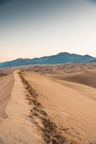 Bereits vor dem - Losmarschieren haben Oli und Alain eine Route in der Dünenlandschaft ausgekundschaftet. Schnell einmal sind die Schuhe mit Sand gefüllt und es geht zwei Schritte vor und einen zurück. Wir laufen von Düne zu Düne, rauf und runter, ab in die Einsamkeiten der Sandberge. Durch die 2500 Meter über Meer arbeiten unser Pumpen auf Hochtouren. War es im Campground noch windstill, pfeift uns auf dem Grat ein mühsamer Wind um die Ohren und der Sand nagelt an unseren Beinen und Armen. Zum guten Glück ist die Sonne durch eine weit entfernte Gewitterwolke bedeckt.Wir wollen möglichst nahe an der sogenannten High Dune unsere Zelte aufschlagen, damit wir in der Früh den Sonnenaufgang fotografieren können. Und ausserdem ein windstilles Plätzchen. Mission Impossible. Wir einigen uns auf einen Standort inmitten der Dünenfelder. Ist ja klar… genau in dem Moment als wir die Zelte aufstellen, beginnt es böenartig zu winden. Unser Zelt und unsere Nerven werden auf die Probe gestellt. Wenigstens regnet's und gewittert's nicht. Trotzdem: heimelig ist anders. Nichts mehr von Glamping und so - wir müssen ein Loch in den Sand buddeln, damit wir das Wasser mit unserm Campingkocher für unsere Beutelnahrung kochen können. Böe um Böe jagt um's Zelt und die Heringe halten mehr schlecht als recht im feinen Dünensand.