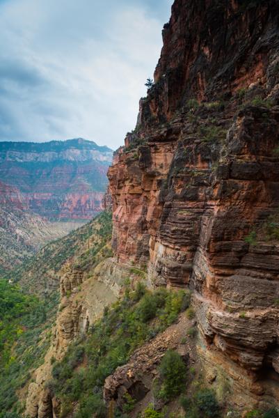Wir verdrücken - noch rasch unseren Tüten-Zmorge und machen uns um 06:00 Uhr wieder auf die Wandersocken. Der erste Teil der heutigen Strecke ist moderat steigend und gut zum Aufwärmen. Danach aber geht es richtig los mit der Steigung. Wir kämpfen uns durch Schlamm und Muli-Hinterlassenschaften (in diesem Teil des Canyons sind die im Gegensatz zum gestrigen Teil wieder zugelassen) über hohe Stufen aus Stein oder Holz. An dieser Stelle möchten wir mal erwähnen, dass die Wanderwege im Grand Canyon wirklich super ausgebaut sind. Es ist eine wahre Freude, den schönen, sich in die Natur einschmiegenden Pfaden zu folgen.Da es heute eindeutig ans