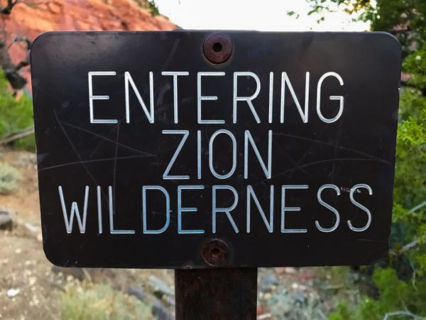 """Die Rangerin - im Visitor Center hat uns informiert, dass am nächsten Tag die Regenwahrscheinlichkeit bei 30% am Nachmittag liegt.Wir befolgen ihren Rat und machen uns früh auf die Socken.Und darum grüsst täglich das Murmeltier. Früh weckt uns der Wecker. Um halb sechs sind wir schon """"on sö roud"""" zum Left Fork Trailhead im nordwestlichen und wilderen Teil des Zion Nationalparks. Da wir die Küche dabei haben, gibts auf dem Parkplatz eine Stärkung und dann gehts los. Ziel ist die Subway - From the Bottom and back. Zuerst verläuft der Weg gemütlich durch ein Wacholder/Kiefer-Wäldchen, bevor es am Abbruchrand auf einem felsigen, sandigen Zick-Zack-Weg sehr steil runter fällt. Plötzlich ein Schleifgeräusch und Büsche, die knacken. Was war denn das??? Dann hört Murielle das Kichern von Jenny. Sie ist auf einem sandigen Felsen ausgerutscht und in die steile Böschung runtergefallen. Netterweise wurde sie durch einen Stechpalmenbusch vom Sturz in die Tiefe gerettet. Alleine kommt sie nicht mehr auf die Füsse und Murielle und Alain müssen sie wie eine gestürzte 150 Kilo Bergziege an den Hufen ähh Händen auf die Beine ziehen. Wir können uns kaum mehr halten vor Lachen und der Spruch """"this ist not a kindergarden"""" brennt uns auf den Lippen. Jenny ist mit einigen Stechpalmen-Kratzern an den Armen davongekommen."""