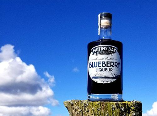 blueberry_nature.jpg