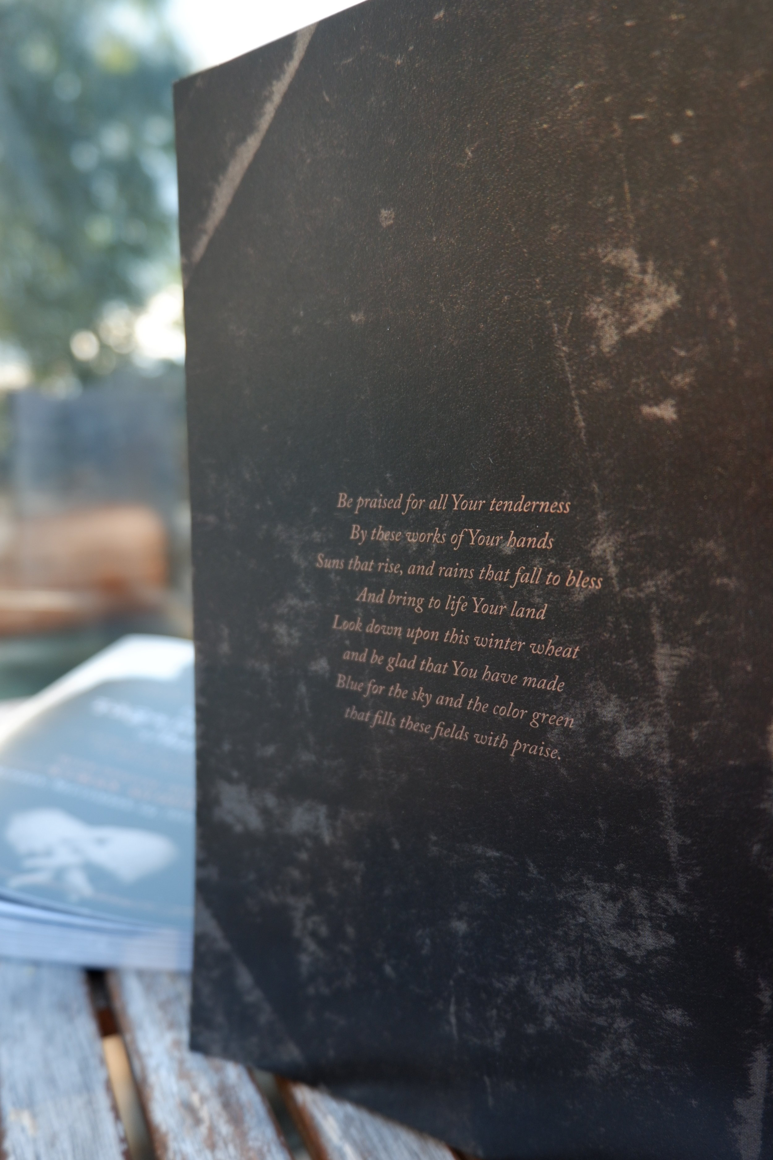 Back cover lyric feature  (design by Brannon McAllister)