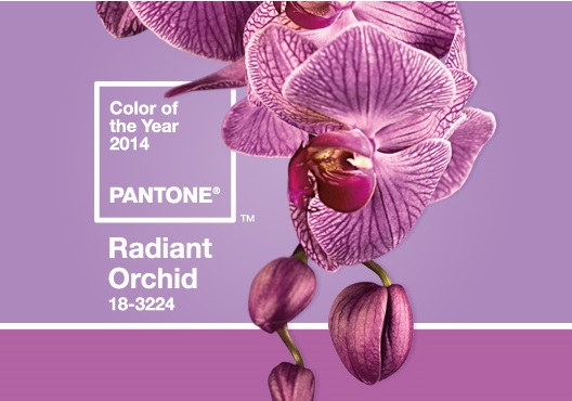 Pantone-2014-Color-Of-The-Year.jpg
