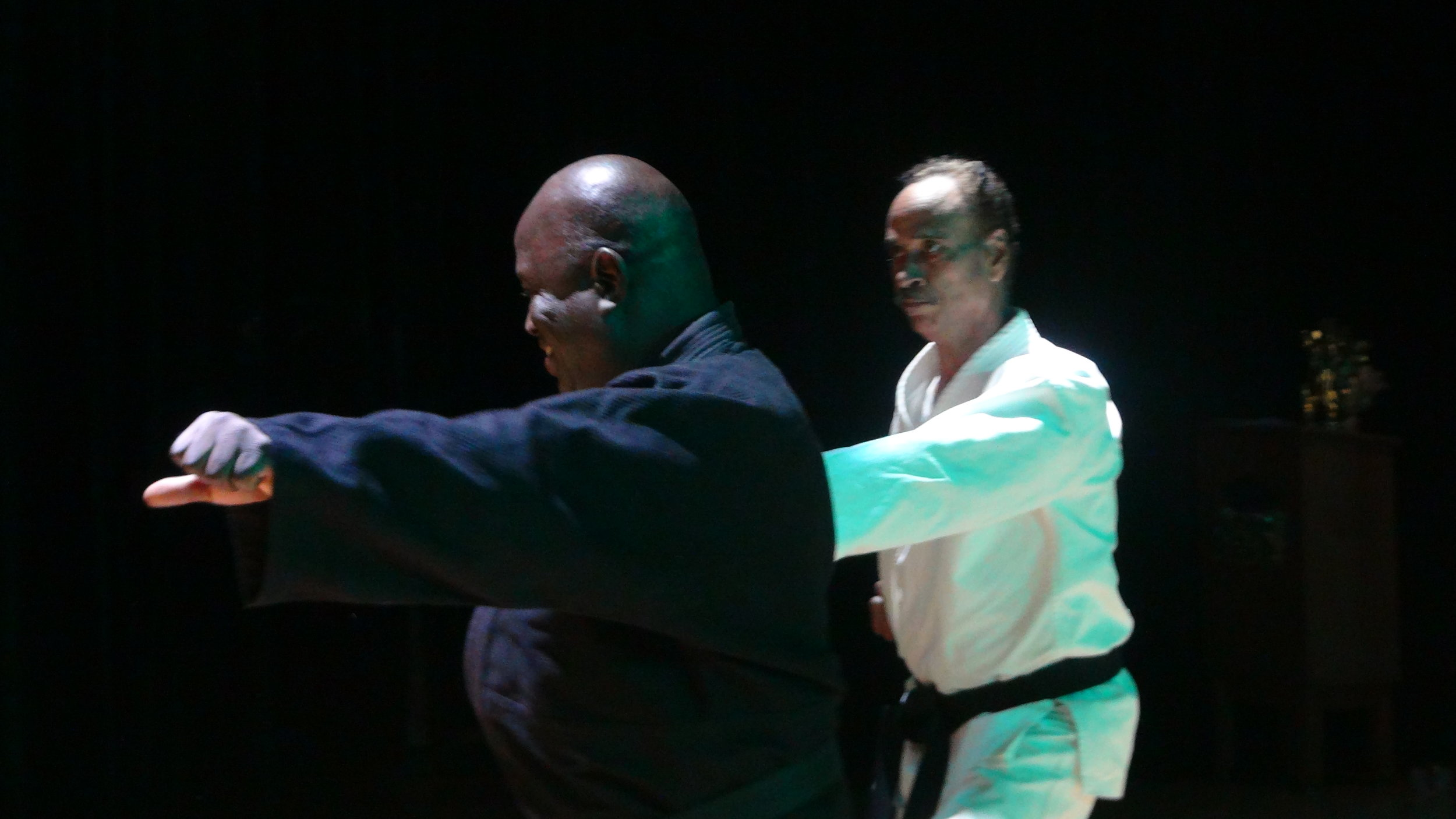 KARATE SHOWCASE -