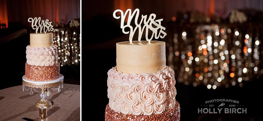 Bloomington-Normal-wedding-Holiday-Inn-airport-wedding_3140.jpg