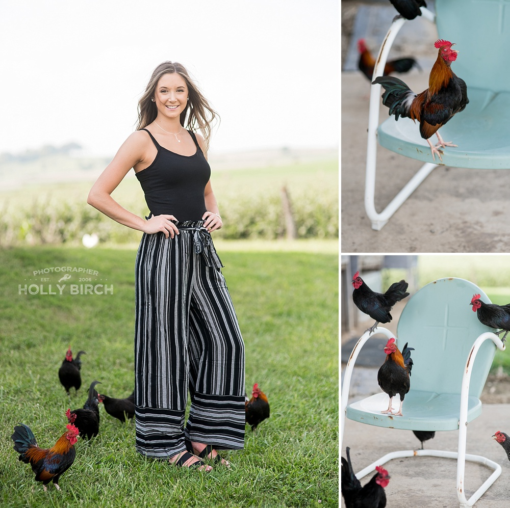 senior session with chickens