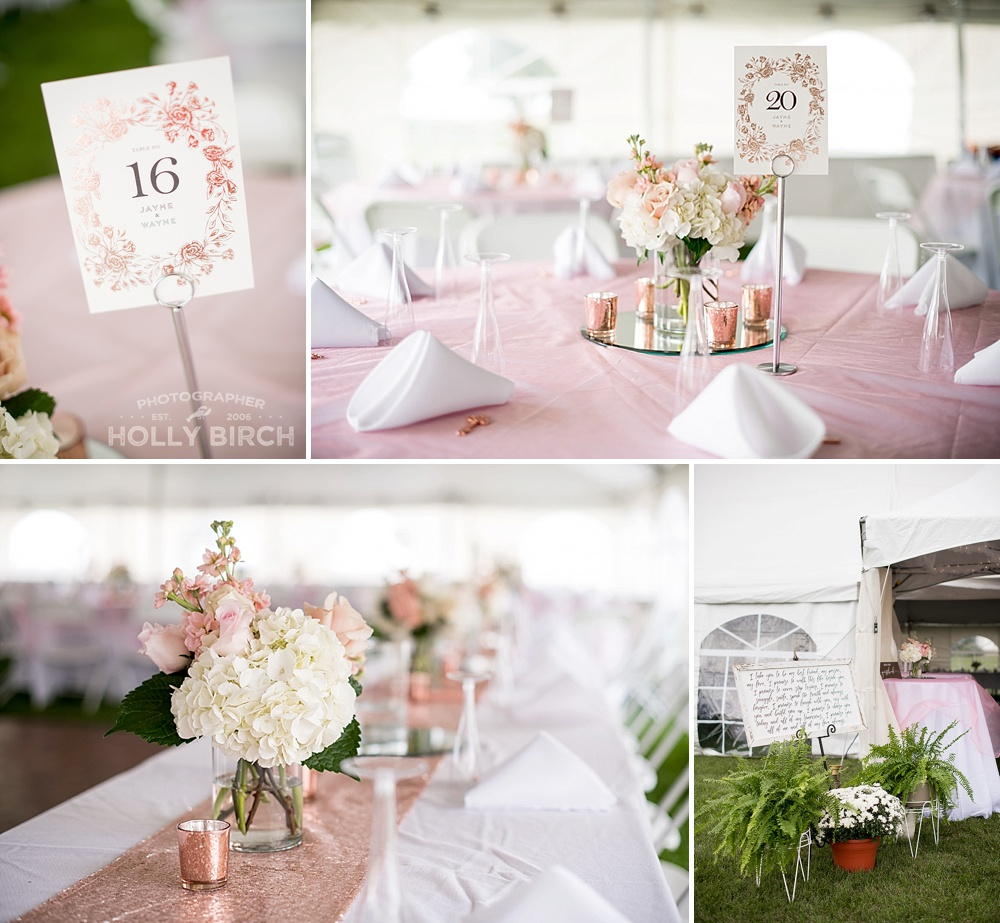 Onarga-Gilman-farm-tent-pink-rose-gold-wedding_3993.jpg