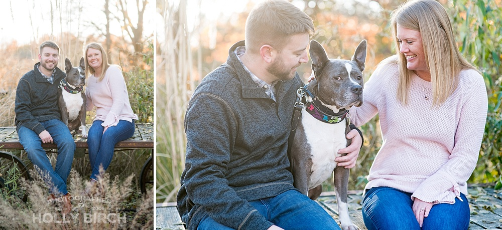 Fall-engagement-photos-of-couple-with-pitbull-dog_4199.jpg