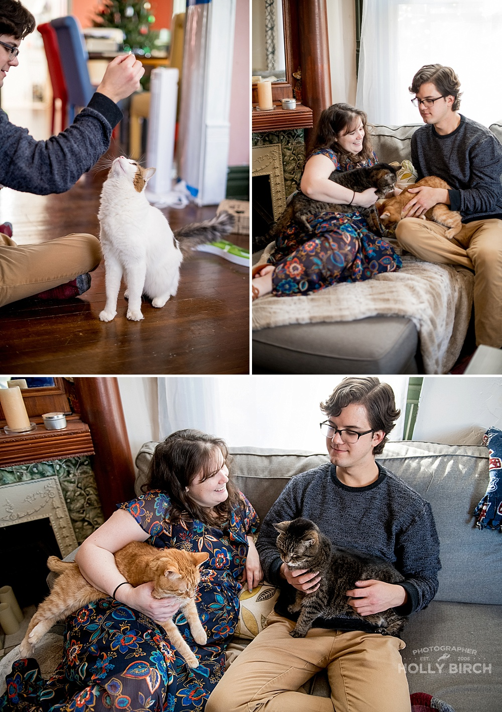 lifestyle-session-with-cats-fur-babies_4238.jpg