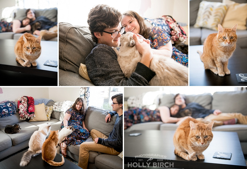 lifestyle-session-with-cats-fur-babies_4241.jpg