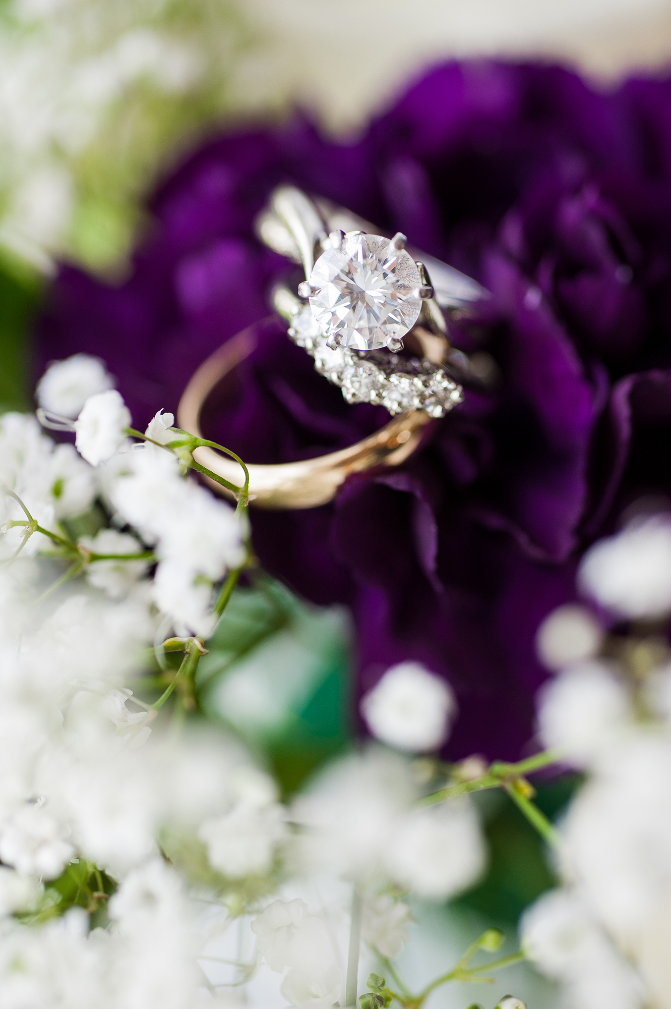 purple baby's breath ring photo