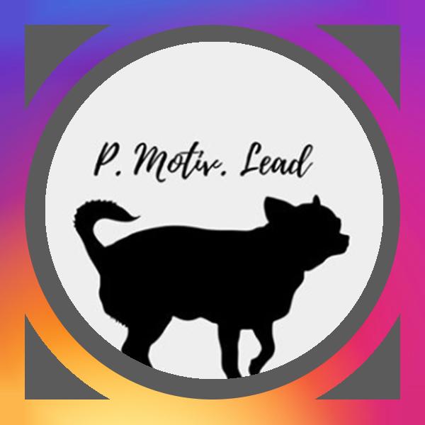 pmotivlead_Official BADGE.png