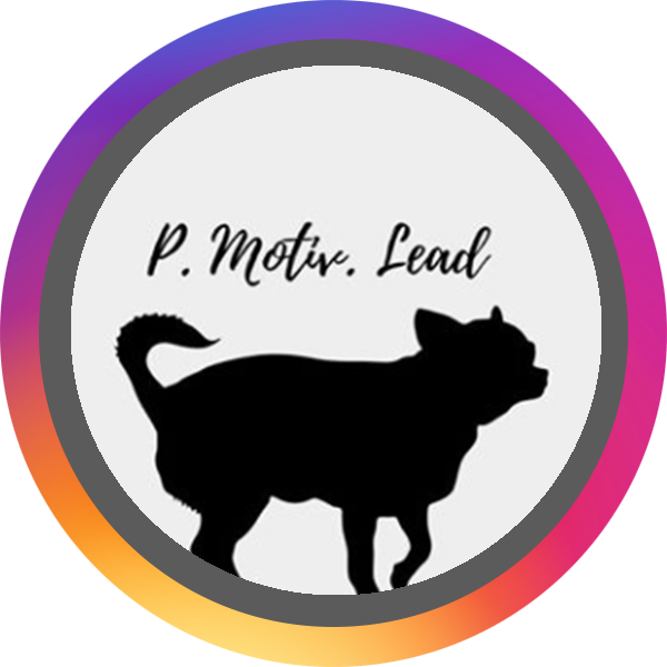 pmotivlead_Official BADGE.png