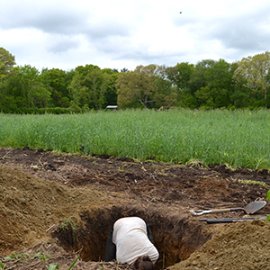 a hole is to dig  Cranston, RI 2014