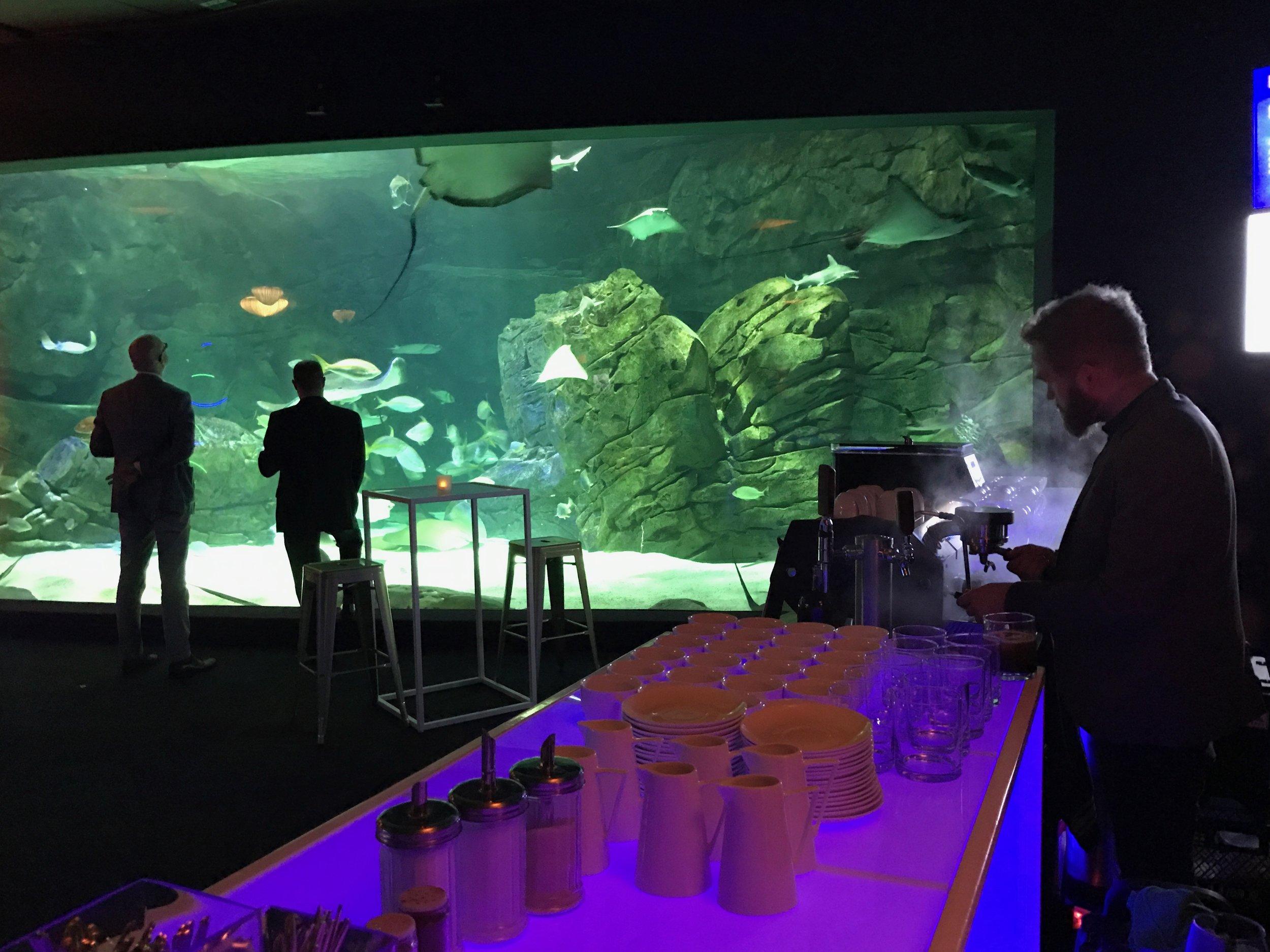 Ripley's Aquarium Event