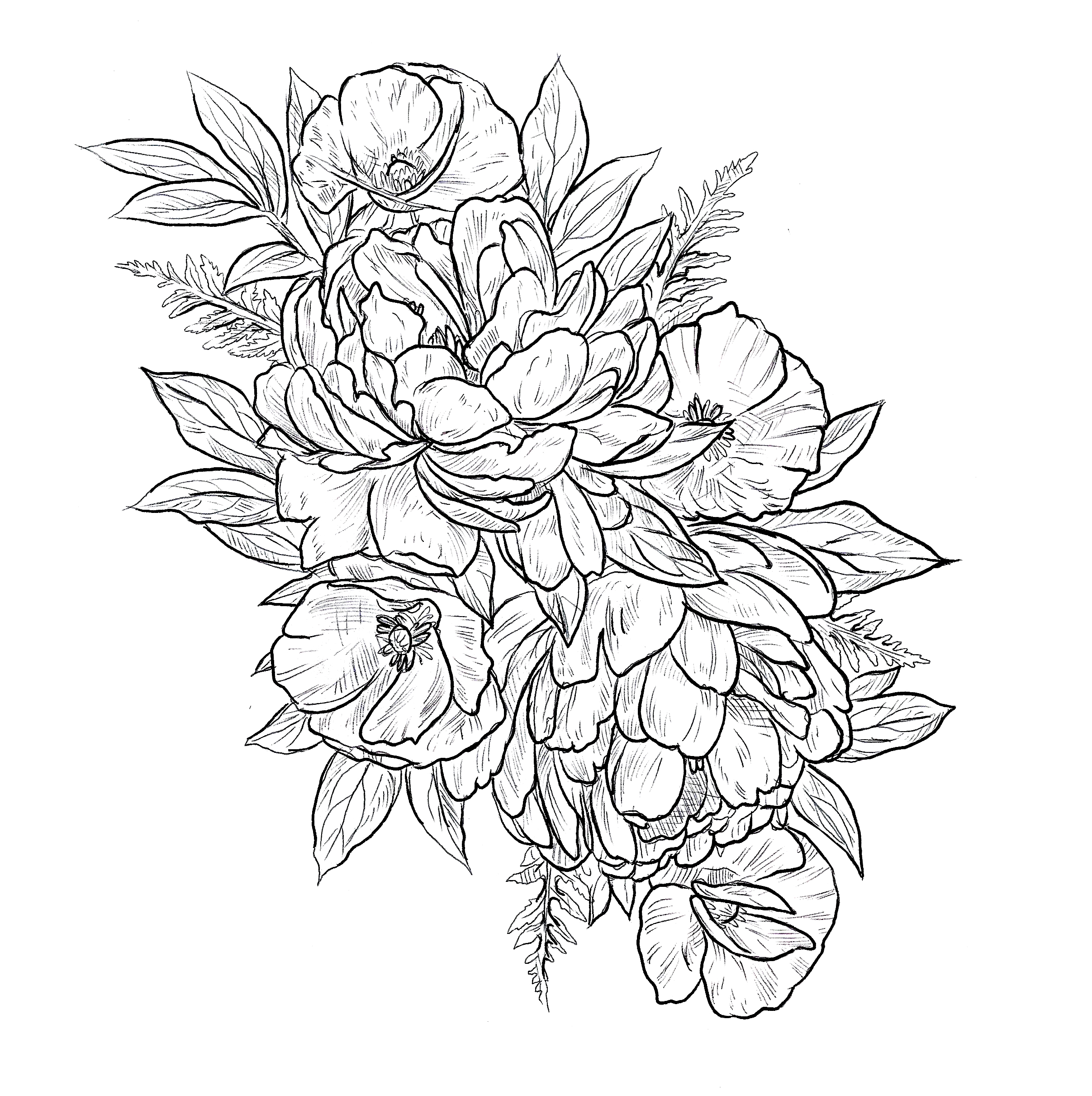 "- *Booked* Peonies and PoppiesLocations: Thigh/hip, armMinimum size: 12"", meant to be largeHourly rateNotes: Can be colored or shaded."