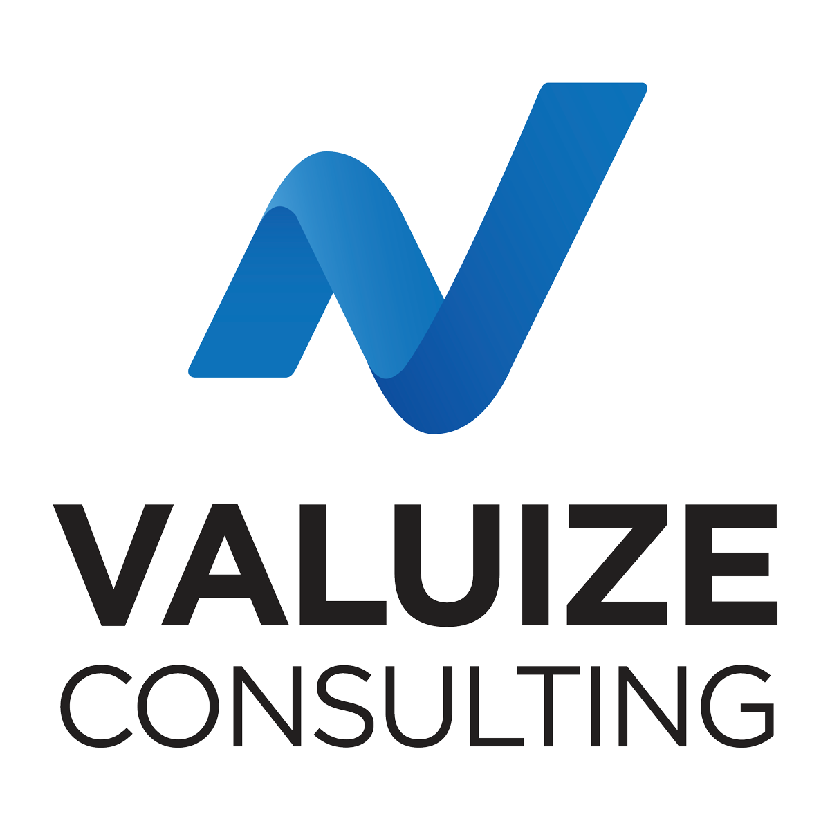 Valuize Consulting