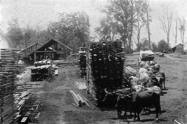 11.Lars Andersen Esk Saw Mill.jpg