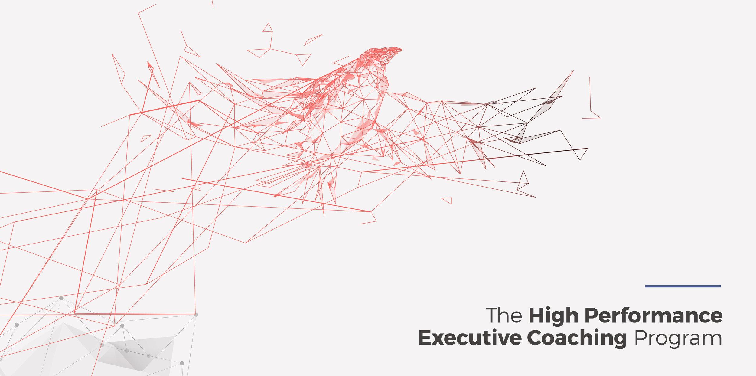 ce1-hp-executive-coaching.jpg