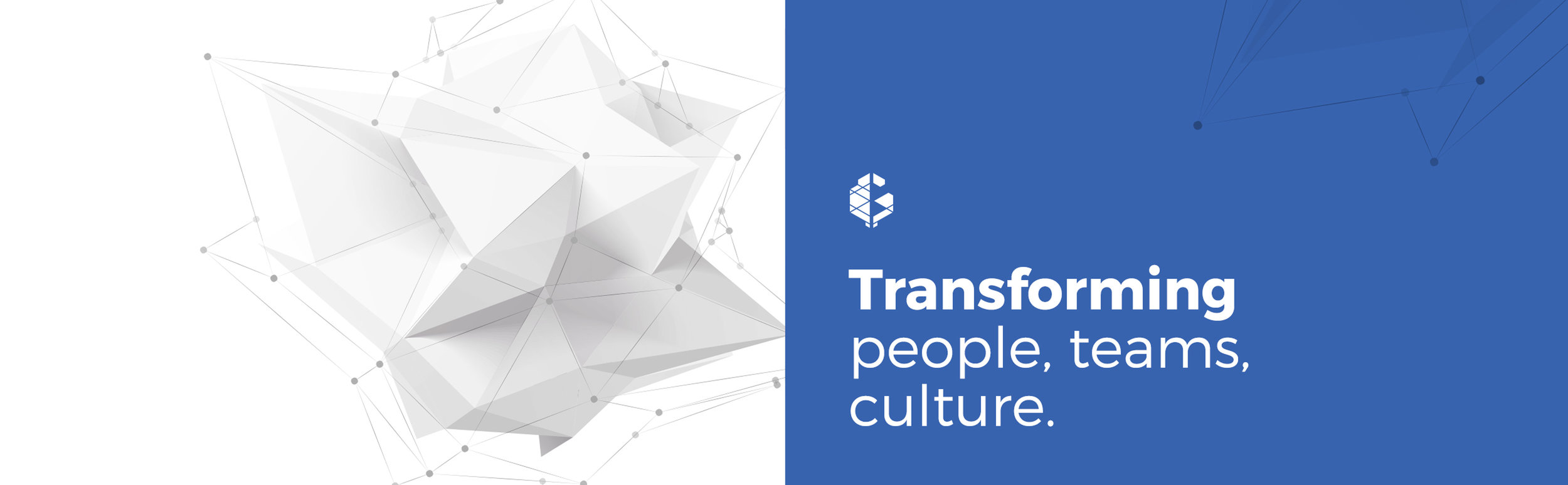 Banner 1 - Transforming people, teams & culture.jpg