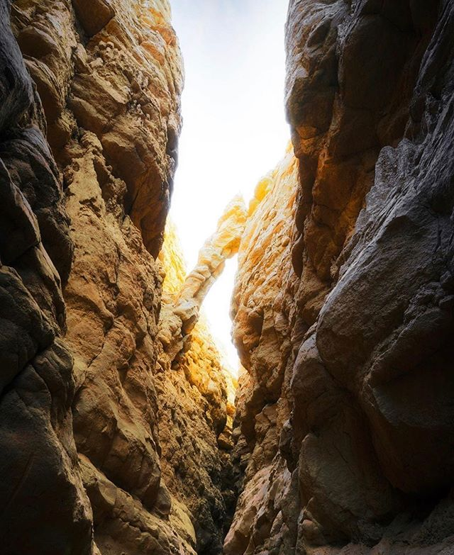 What is your favorite desert hike? One of our favorites is The Slot at Anza-Borrego State Park (@anzaborregodesertsp)! Walking this 0.8 mile trek through a narrow siltstone canyon feels like being on another planet. As you venture further into The Slot, the walls grow taller and the path becomes narrower. At times, you may find yourself squeezing through sideways to make it through the slim gap.  Tag a hiking partner you'd like to explore this trail with in the comments below! And if you'd like to see more of our favorite desert hikes, check out our post from two days ago. While you're there, please enter our giveaway! (📷: @kcookephotography) #hikesandiego #hikesd