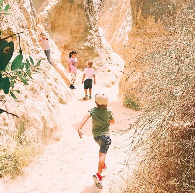 Happy Friday! Looking for kid-friendly weekend plans? We suggest checking out one of our favorite coastal hikes, Annie's Canyon Trail in Solana Beach. This short but sweet trail is a unique exploration through a soft Torrey sandstone slot canyon. With footholds and a ladder to climb, it's the perfect way for kids to burn off some energy! Plus, climbing through the slot only takes about 5 minutes, and the entire hike can be completed in 40 minutes or less. Parking is available along North Rios Avenue.  What's your favorite kid-friendly trail? Let us know in the comments below! And if you do happen to go hiking with your kiddos this weekend, be sure to share your pictures with us by using #hikesandiego or #hikesd and tagging us! (📷: @thepreggerspantry)