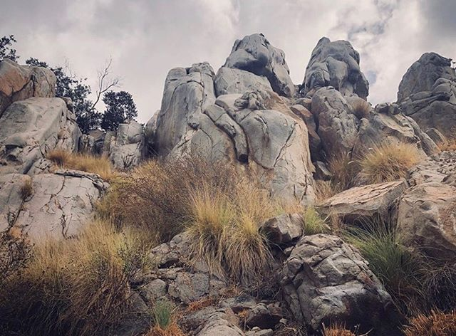 Swipe through these photos by @maris.jamie to see why Rock Climber's Loop in @missiontrails_regionalpark is one of the best rock-climbing spots in San Diego. According to Afoot and Afield San Diego County, the trail was built by the climbers who practice here, and the park made improvements to establish an official trail. Climbers, what are some of your other favorite sites in San Diego County? #hikesandiego #hikesd