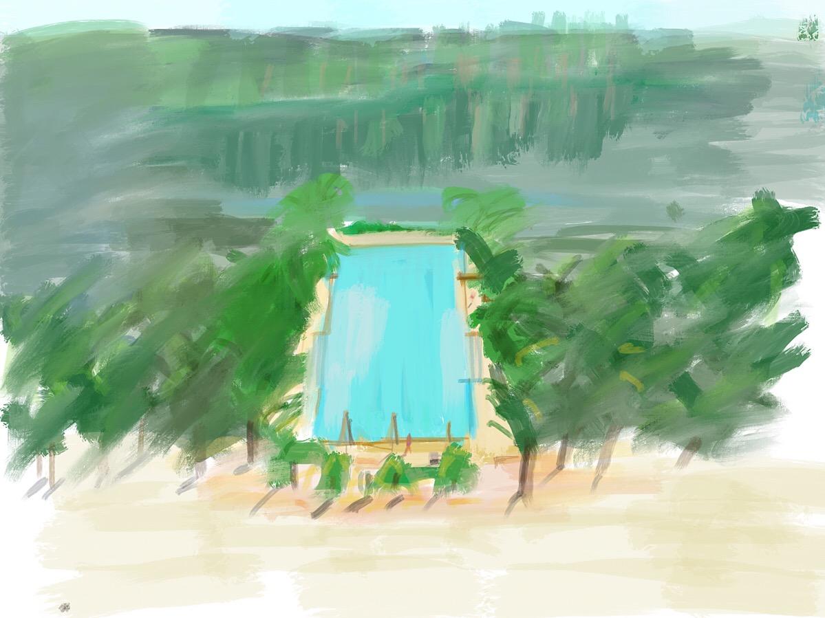 "Geoff Watson, ""Swimming pool sketch,"" iPad, 2018."
